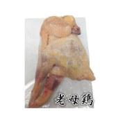 草鸡【1只】